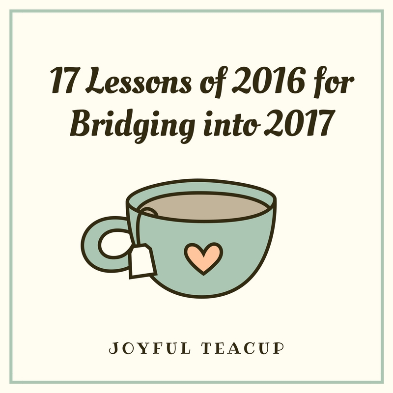 17 Lessons of 2016 for Bridging into 2017